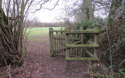 Walk 1 – Walk around Wickhambrook