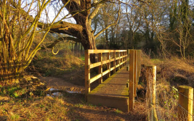 Walk 15 – A short circuit of Stansfield