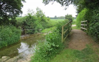 Walk 6 – Wickhambrook Walk